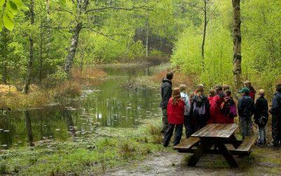 Flere turister til fjordbyerne